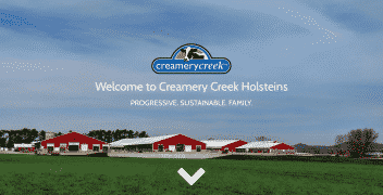 Creamery Creek Holsteins